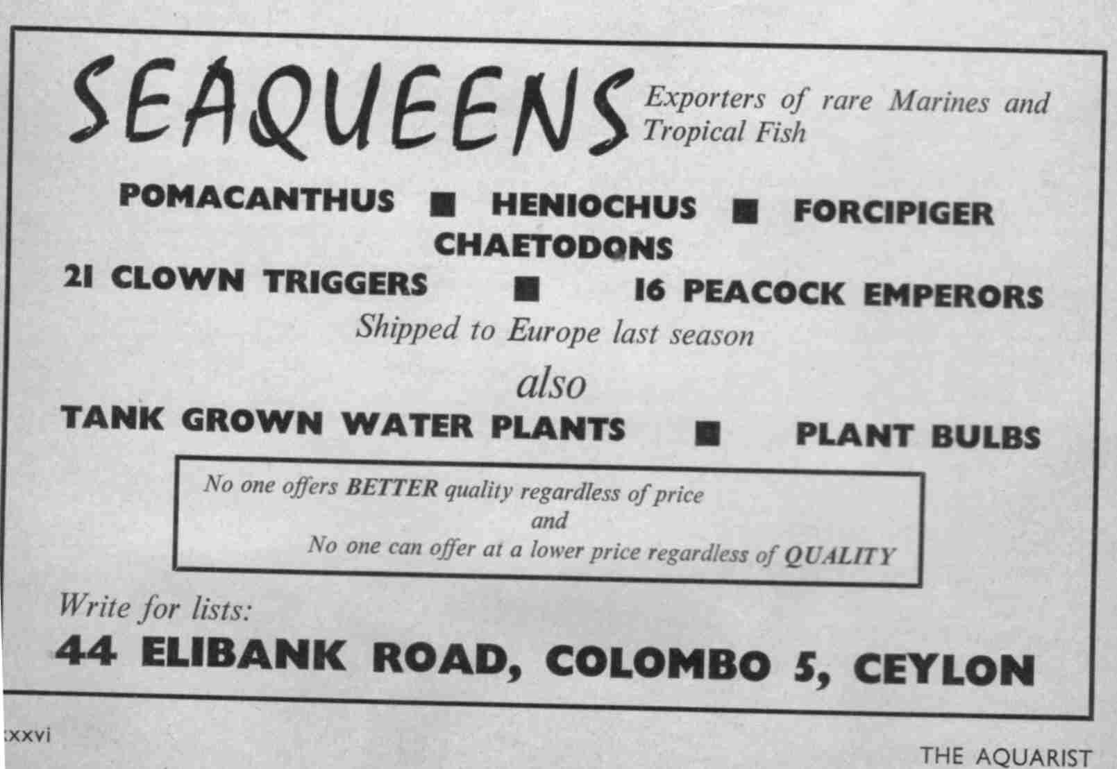 Advertisement from Seaqueens exporters (Hilary Guneratne ) in Columbo Sri Lanka